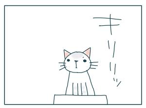 猫と一緒-20090930_01