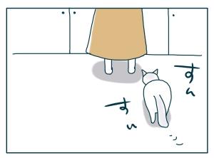 猫と一緒-20090728_02