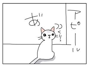 猫と一緒-20101208_07