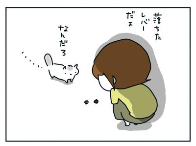 20201116_05