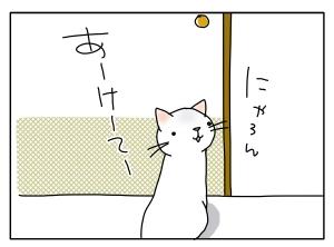 猫と一緒-20100818_08
