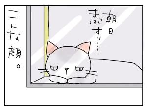 猫と一緒-201012120_05