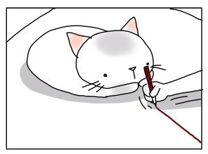 猫と一緒-20130711_03