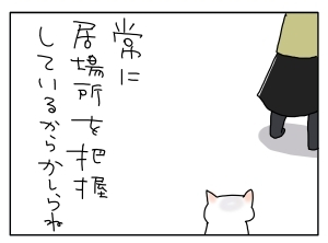 猫と一緒-20100428_05