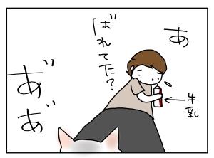 猫と一緒-20110808_02