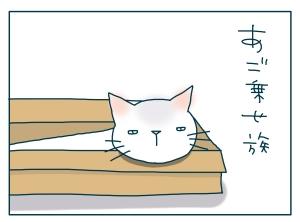 猫と一緒-20090713_09
