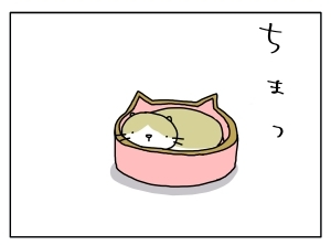 20160323_04