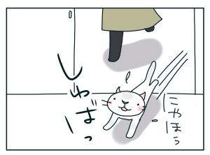 猫と一緒-20100127_07
