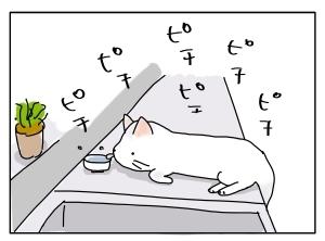 猫と一緒-20100723_09