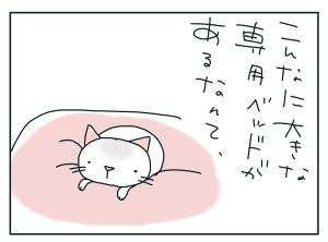 猫と一緒-20100131_03