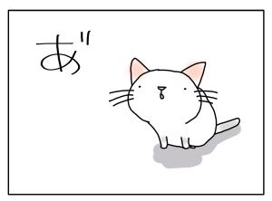 猫と一緒-20110801_01