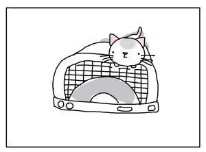 猫と一緒-20130402_03