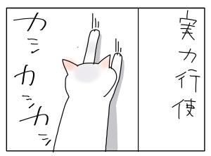 猫と一緒-20101208_11