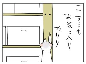猫と一緒-20100808_02