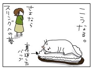 猫と一緒-20101126_12