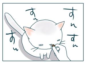 猫と一緒-20090821_10