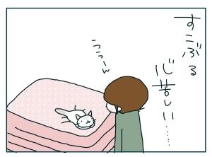 猫と一緒-20091225_17