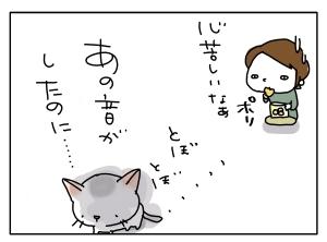 猫と一緒-20111201_04