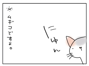 猫と一緒-20111104_05