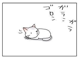 猫と一緒-20100618_02