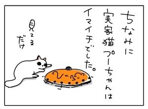$猫と一緒-20110518_03