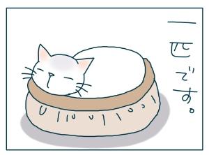 猫と一緒-20090517_04