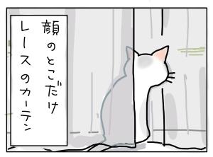 猫と一緒-20130416_06