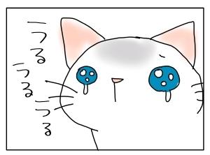 猫と一緒-20121018_03