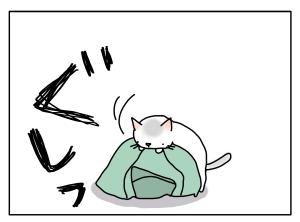 猫と一緒-20131112_06