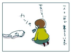猫と一緒-20090121-01