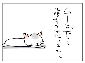 猫と一緒-20110415_08