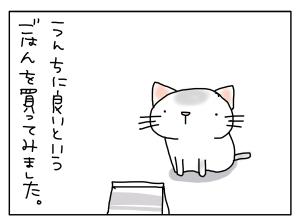 20150217_01