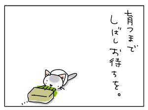 20170618_08