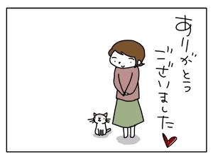 猫と一緒-20121230_07