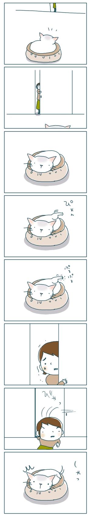 猫と一緒-20081223-01
