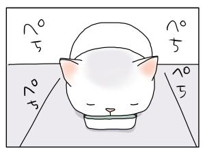 猫と一緒-20100217_01