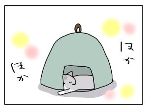 猫と一緒-20131119_03