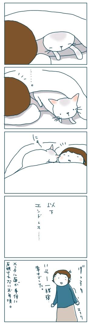 猫と一緒-20081221-03