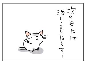 猫と一緒-20121115_08