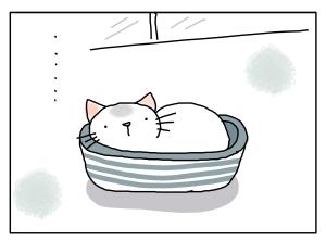 猫と一緒-20131021_05