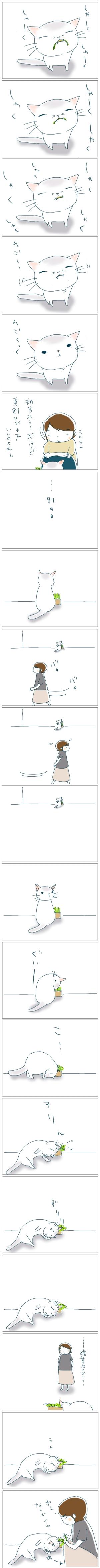 猫と一緒-20080926