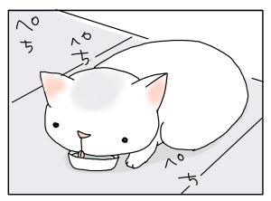 猫と一緒-20100217_11