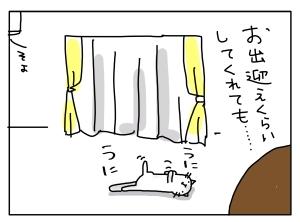 猫と一緒-20120808_12