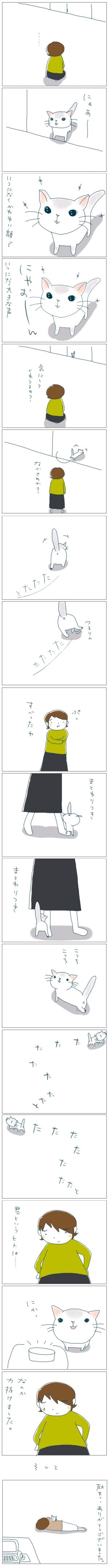 猫と一緒-20081026