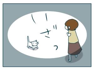 猫と一緒-20090831_03