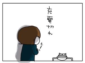猫と一緒-20110512_16