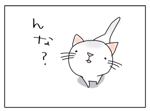 猫と一緒-20100813_09