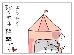 猫と一緒-20120924_04