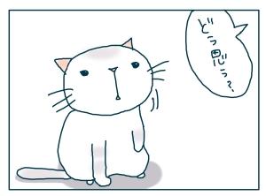 猫と一緒-20090124-03