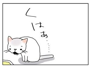 猫と一緒-20100825_04